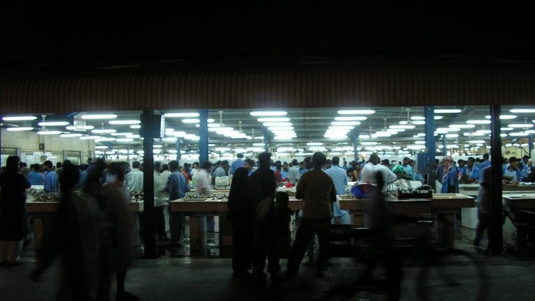 فيش ماركت القاهرة مطعم سوق السمك التجمع الخامس