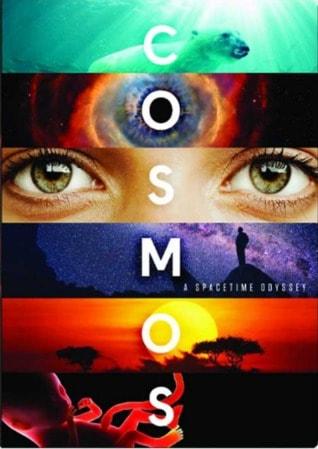 سلسلة الكون: أوديسة المكان والزمان (2014) Cosmos: A Spacetime Odyssey
