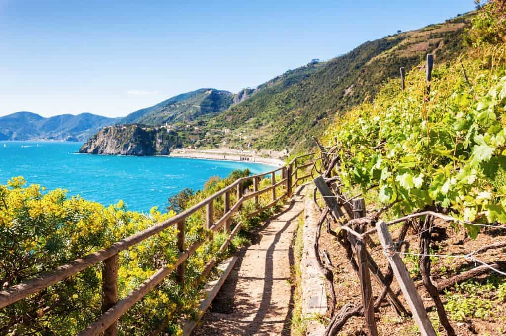 سينك تير Cinque Terre