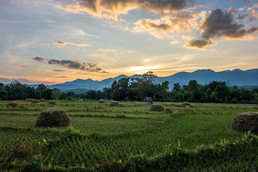 منطقة باي في تايلاند