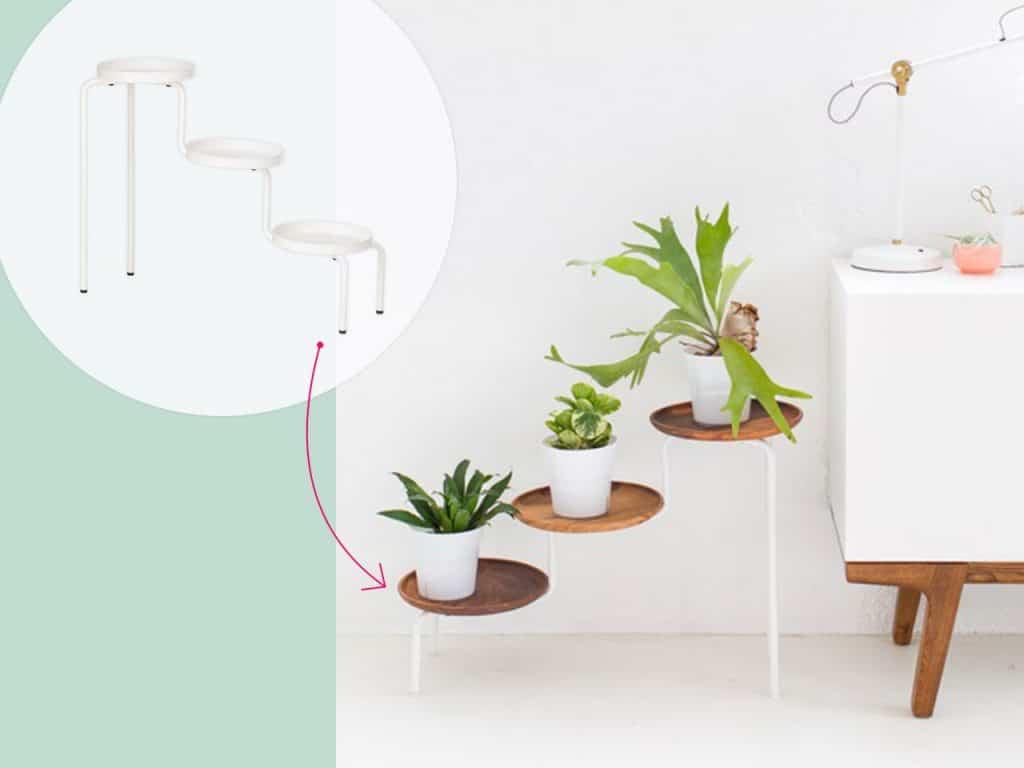تحويل أرفف النباتات المعدنية إلى تصميمٍ عصري
