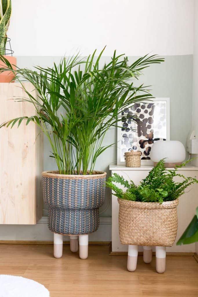"""تحويل حاوية نباتات من """"شتينبار"""" إلى حوض نباتات مزود بأرجل"""