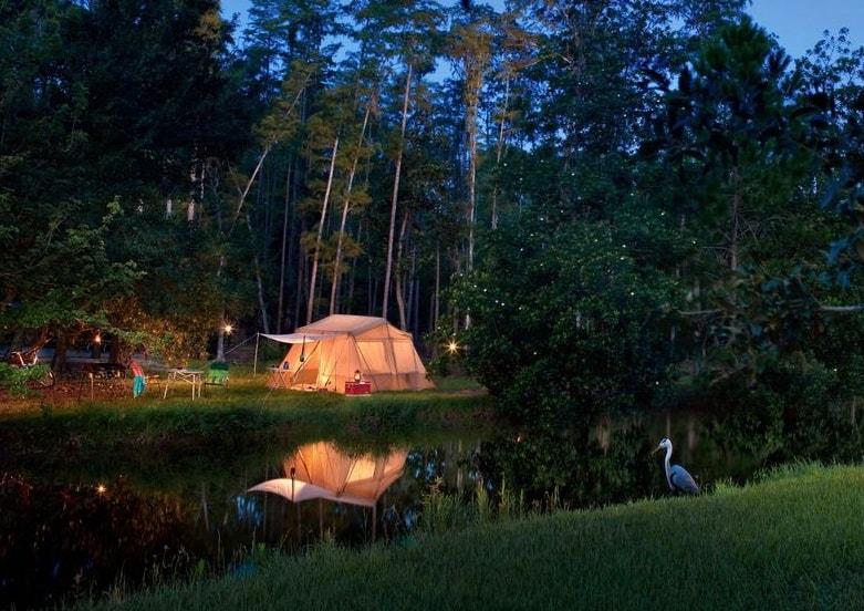 منتجع ديزني للتخييم The Campsites at Disney's Fort Wilderness