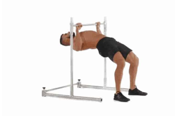افضل تمارين الظهر تمرين الظهر Inverted Row