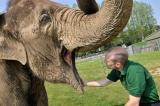افضل حديقة حيوانات في بريطانيا